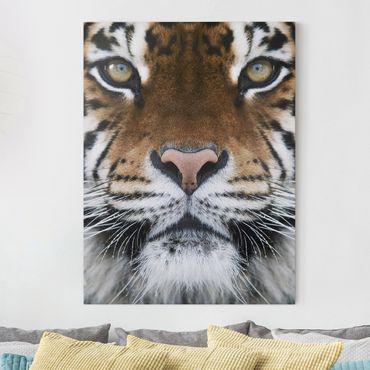 Stampa su tela - Tiger Eyes - Verticale 3:4