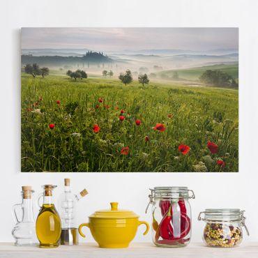 Stampa su tela - Primavera Toscana - Orizzontale 3:2