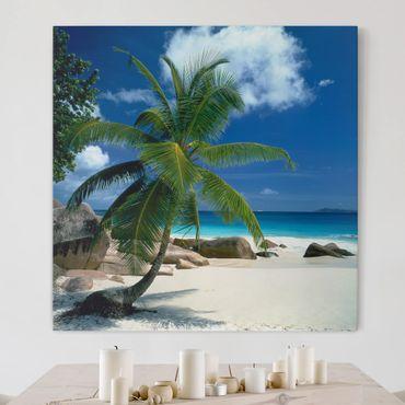 Stampa su tela - Dream Beach - Quadrato 1:1