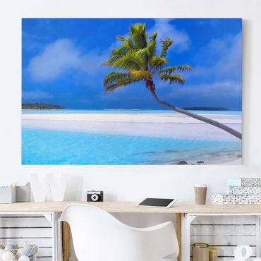 Stampa su tela - Tropical Dream - Orizzontale 3:2