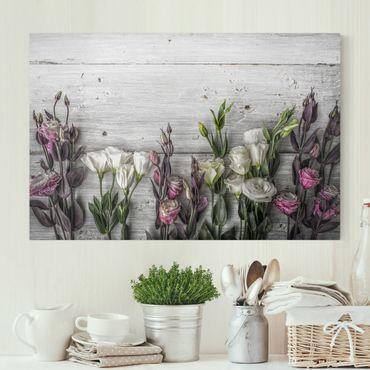Stampa su tela - Tulip Rose Shabby wood look - Orizzontale 3:2