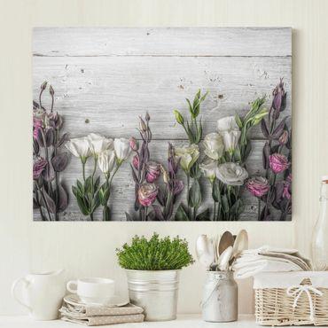 Stampa su tela - Tulip Rose Shabby Wood Look - Orizzontale 4:3