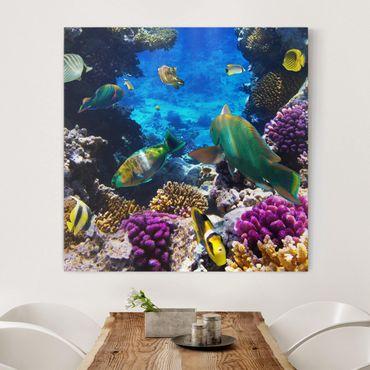 Stampa su tela - Underwater Dreams - Quadrato 1:1