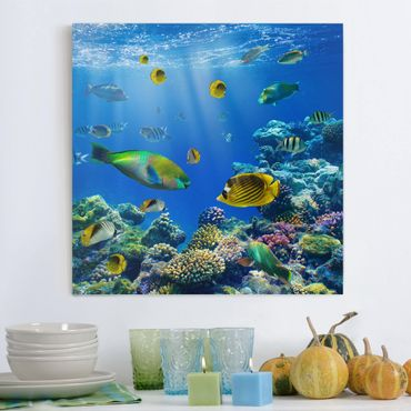 Stampa su tela - Underwater Lights - Quadrato 1:1