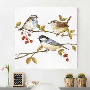 Stampa su tela - Uccelli e Bacche - Cinciallegre - Quadrato 1:1