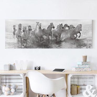Stampa su tela - Cavalli bianchi nel Mare - Panoramico