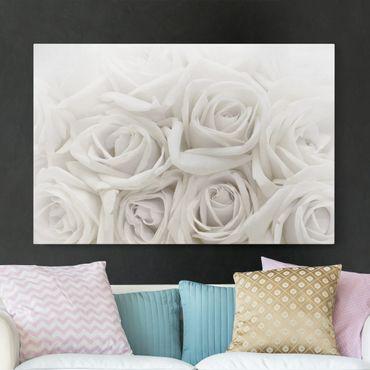 Stampa su tela - White roses - Orizzontale 3:2