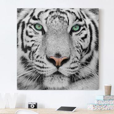Stampa su tela - White Tiger - Quadrato 1:1