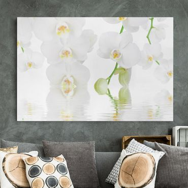 Stampa su tela - Wellness orchid - White orchid - Orizzontale 3:2
