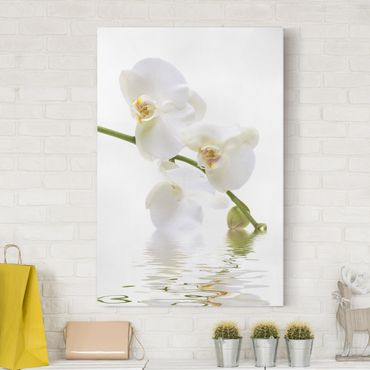 Stampa su tela White Orchid Waters - Verticale 2:3