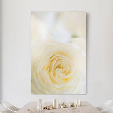 Stampa su tela White Rose - Verticale 2:3