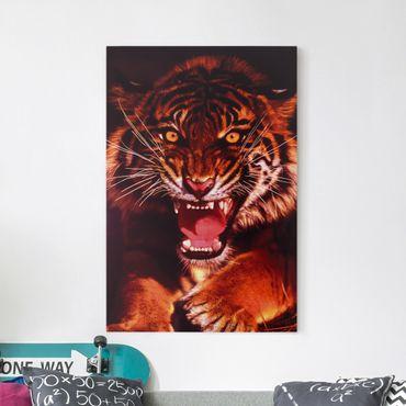 Stampa su tela Wild Tiger - Verticale 2:3