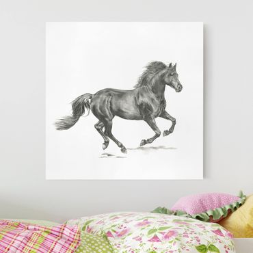 Stampa su tela - Wild Horse Trial - Stallion - Quadrato 1:1