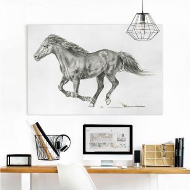 Stampa su tela - Wild Horse Trial - Mare - Orizzontale 3:2