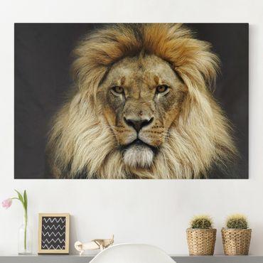Stampa su tela - Wisdom of Lion - Orizzontale 3:2