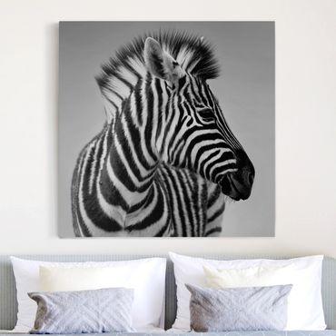 Stampa su tela - Zebra Baby Portrait II - Quadrato 1:1