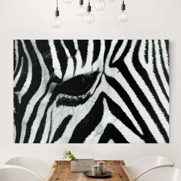 Stampa su tela - Zebra Crossing - Orizzontale 3:2