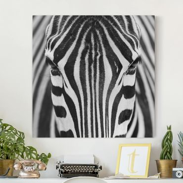 Stampa su tela - Zebra Look - Quadrato 1:1