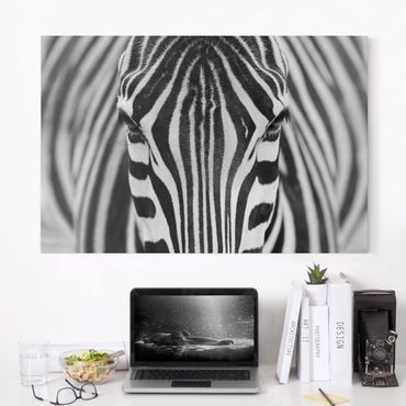 Stampa su tela - Zebra Look - Orizzontale 3:2