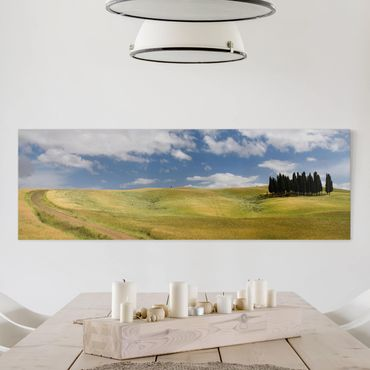 Stampa su tela - Cypress Trees In Tuscany - Panoramico