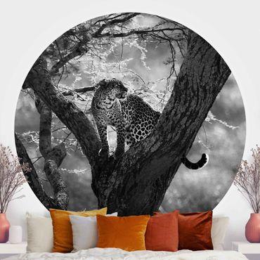 Carta da parati rotonda autoadesiva - Leopardo nero bianco nell'albero