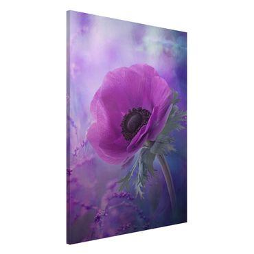 Lavagna magnetica - Anemone Flower in Violet - Formato verticale 2:3
