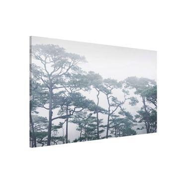 Lavagna magnetica - Treetops In Fog - Formato orizzontale 3:2