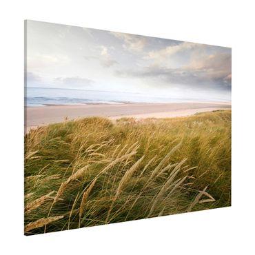 Lavagna magnetica - Dunes Dream - Formato orizzontale 3:4