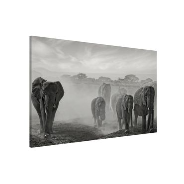 Lavagna magnetica - Elephant Herd - Formato orizzontale 3:2
