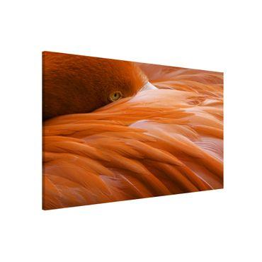 Lavagna magnetica - Flamingo Feathers - Formato orizzontale 3:2