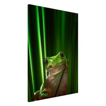 Lavagna magnetica - Happy Frog - Formato verticale 2:3
