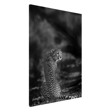 Lavagna magnetica - Cheetah In Wildness - Formato verticale 2:3