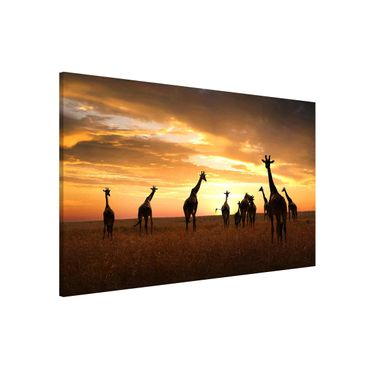 Lavagna magnetica - Giraffe Family - Formato orizzontale 3:2