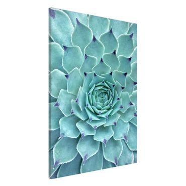 Lavagna magnetica - Cactus Agave - Formato verticale 2:3