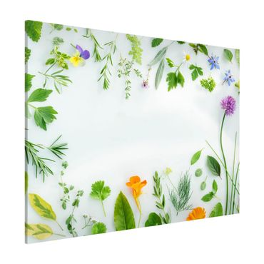 Lavagna magnetica - Herbs And Flowers - Formato orizzontale 3:4