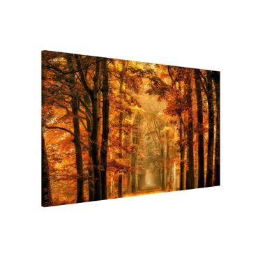 Lavagna magnetica - Fairy Forest in Autumn - Formato orizzontale 3:2
