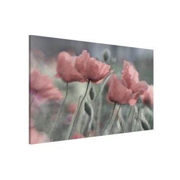 Lavagna magnetica - Painterly Poppies - Formato orizzontale 3:2