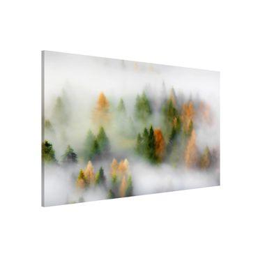 Lavagna magnetica - Nube di foresta in autunno - Formato orizzontale 3:2