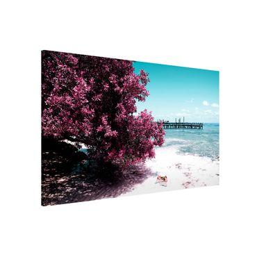 Lavagna magnetica - Paradise Beach Isla Mujeres - Panorama formato orizzontale