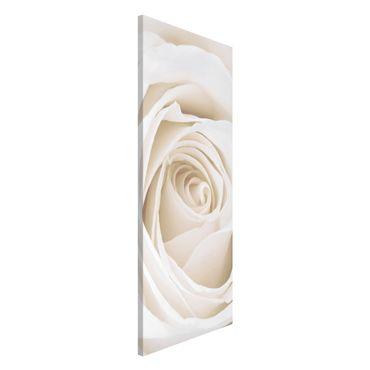 Lavagna magnetica - Rose Picture Pretty White Rose - Panorama formato verticale