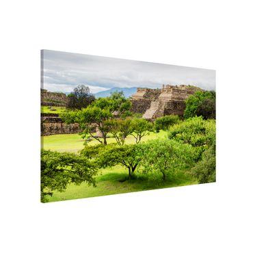 Lavagna magnetica - Pyramid Of Monte Alban - Panorama formato orizzontale