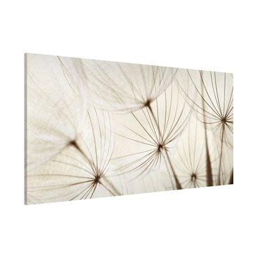 Lavagna magnetica - Gentle Grasses - Panorama formato orizzontale