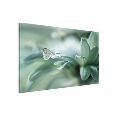 Lavagna magnetica - Farfalla E Gocce di rugiada In Pastel Verde - Formato orizzontale 3:2
