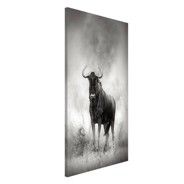 Lavagna magnetica - Staring Wildebeest - Formato verticale 4:3
