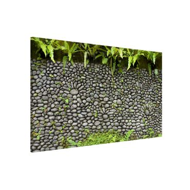 Lavagna magnetica - Stone Wall With Plants - Formato orizzontale 2:3