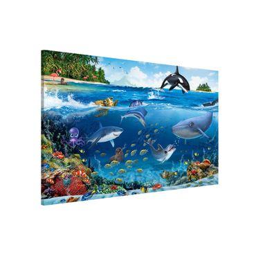 Lavagna magnetica - Animaletti Dall'Oceano - Formato orizzontale 3:2