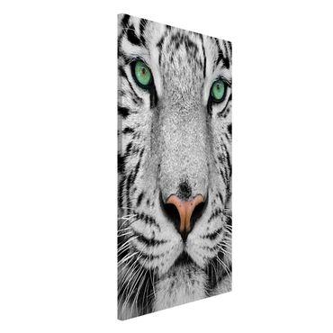 Lavagna magnetica - White Tiger - Formato verticale 4:3