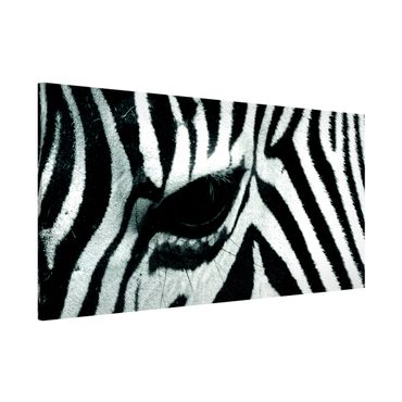 Lavagna magnetica - Zebra Crossing - Panorama formato orizzontale