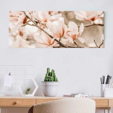 Quadro in vetro - Ramo di magnolia in stile vintage