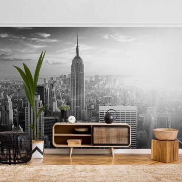 Carta da parati metallizzata - Manhattan Skyline